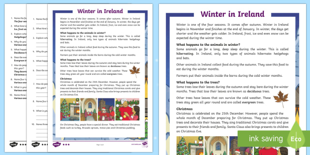 Winter in Ireland 3rd and 4th Class Differentiated Reading Comprehension Activity - Differentiated Winter in Ireland Comprehensions ROI, winter, christmas, snow, ice, weather, hedgehog