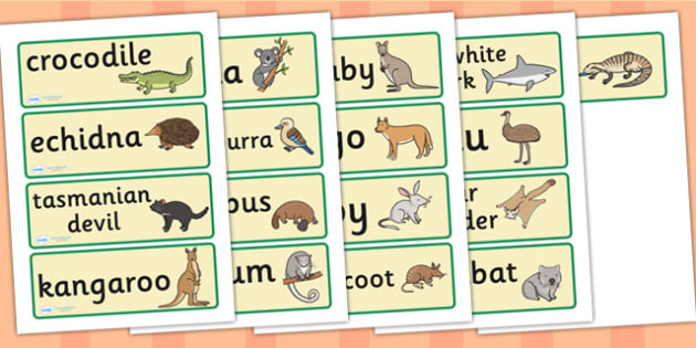 Australian Animal Word Cards - Australian animals, word card, flashcards, kangaroo, wallaby, kookaburra, wombat, crocodile, koala, possum