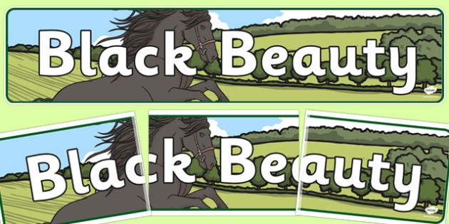 Black Beauty Display Banner - black beauty, display, banner