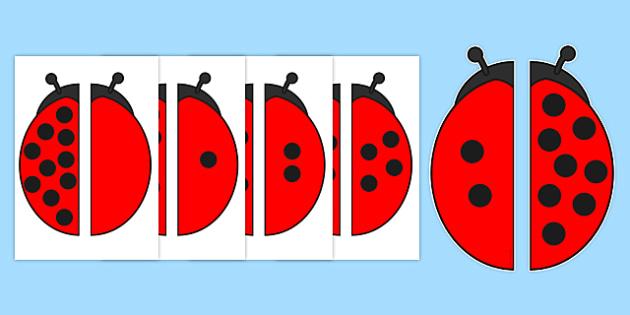 Ladybird Spot Number Bonds to 10 Matching Activity - ladybird, spot, number bonds