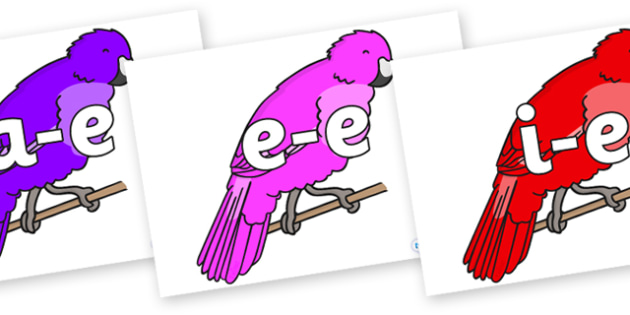 Modifying E Letters on Parakeets - Modifying E, letters, modify, Phase 5, Phase five, alternative spellings for phonemes, DfES letters and Sounds