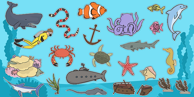 under the sea clip art images animals under the sea sea rh twinkl co uk under the sea clipart background under the sea clip art border