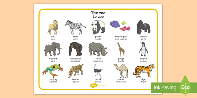 Italian English Animsld: The Zoo Word Mat English/Italian