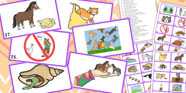 Animal Idiom Picture Cards - animal, idiom, picture, cards, sen