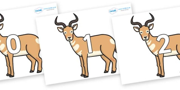Numbers 0-50 on Antelopes - 0-50, foundation stage numeracy, Number recognition, Number flashcards, counting, number frieze, Display numbers, number posters