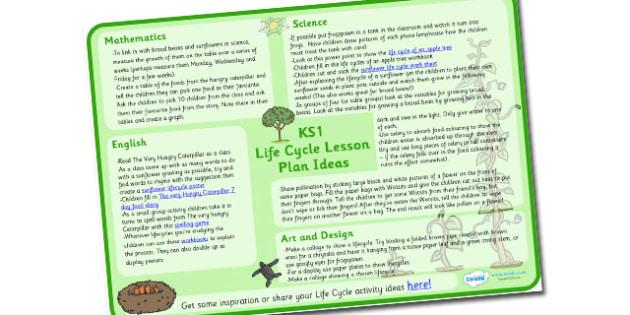 Australia Life Cycle Lesson Plan Ideas KS1 -