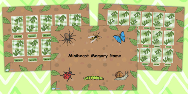 Minibeast Memory Game Flipchart - minibeasts, memory, games