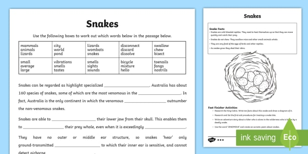 Australian Animals Years 3-6 Snakes Differentiated Activity Sheets - Australian Animals, reptiles, cloze passages, activity sheets, word search, research, fast finisher,