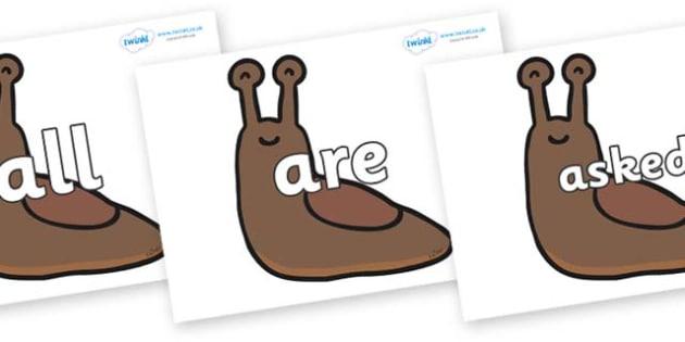 Tricky Words on Slugs - Tricky words, DfES Letters and Sounds, Letters and sounds, display, words