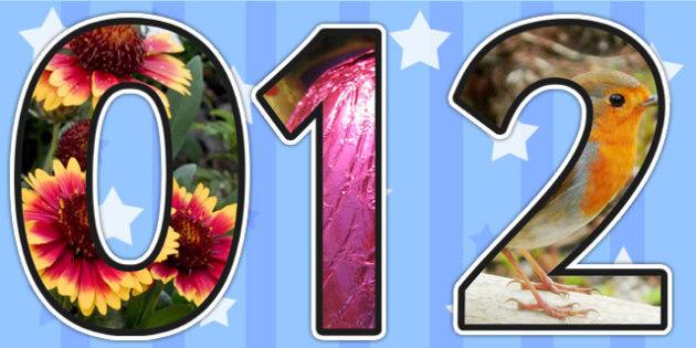 Seasons Themed Photo Display Numbers - seasons, numbers, display