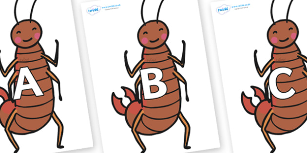 A-Z Alphabet on Earwigs - A-Z, A4, display, Alphabet frieze, Display letters, Letter posters, A-Z letters, Alphabet flashcards