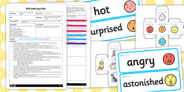 Guess My Face! EYFS Adult Input Plan and Resource Pack - EYFS, planning, all about me, ourselves, my emotions