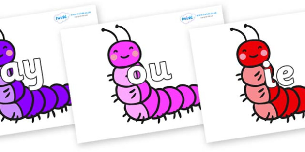 Phase 5 Phonemes on Caterpillars - Phonemes, phoneme, Phase 5, Phase five, Foundation, Literacy, Letters and Sounds, DfES, display