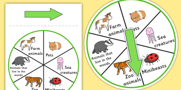 Animal Category Spinner - animals, games, SEN games, visual aid