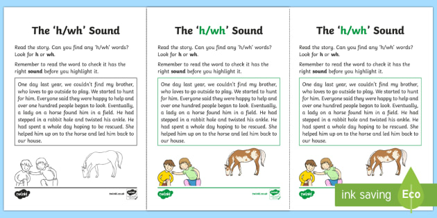 Northern Ireland Linguistic Phonics Stage 5 and 6 Phase 3a, 'h, wh' Sound Activity Sheet - Linguistic Phonics, Phase 3a, Northern Ireland, 'h', 'wh', sound, sound search, text, Workshee