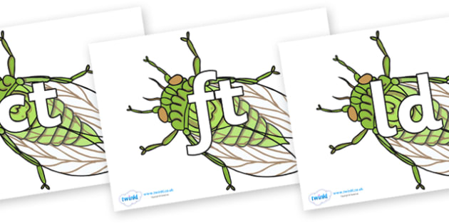 Final Letter Blends on Cicada - Final Letters, final letter, letter blend, letter blends, consonant, consonants, digraph, trigraph, literacy, alphabet, letters, foundation stage literacy
