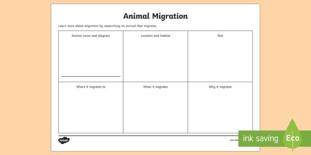 animal migration research worksheet worksheet australia migration animal. Black Bedroom Furniture Sets. Home Design Ideas