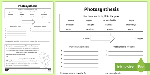 Photosynthesis Worksheet PDF Twinkl
