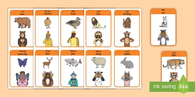 british sign language bsl animals flashcards arabic english topic rh twinkl co uk