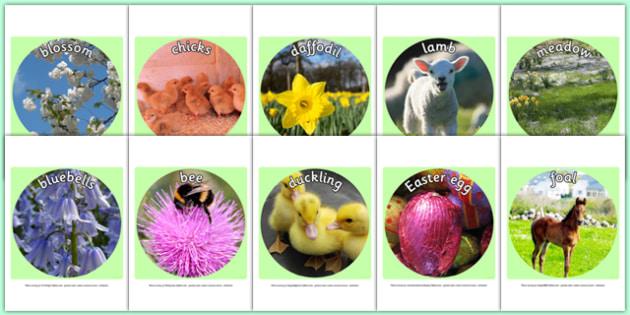 Spring Display Photo Cut Outs - spring, seasons, display photos