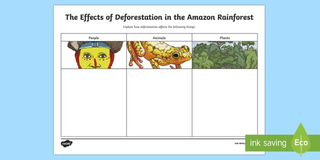 Deforestation Worksheet - resultinfos