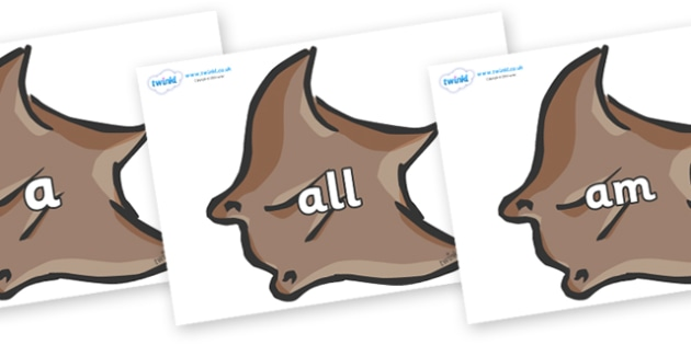 Foundation Stage 2 Keywords on Manta Rays - FS2, CLL, keywords, Communication language and literacy,  Display, Key words, high frequency words, foundation stage literacy, DfES Letters and Sounds, Letters and Sounds, spelling