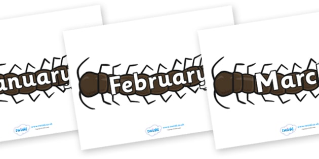 Months of the Year on Centipedes - Months of the Year, Months poster, Months display, display, poster, frieze, Months, month, January, February, March, April, May, June, July, August, September