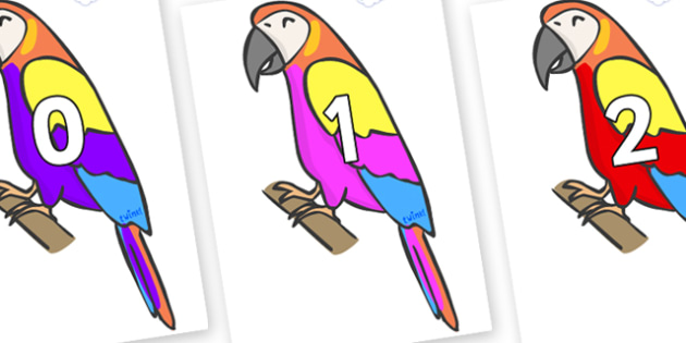 Numbers 0-50 on Macaws - 0-50, foundation stage numeracy, Number recognition, Number flashcards, counting, number frieze, Display numbers, number posters