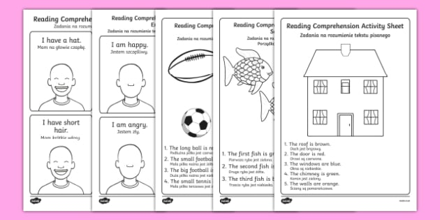 Reading Comprehension Worksheet / Worksheets English/Polish