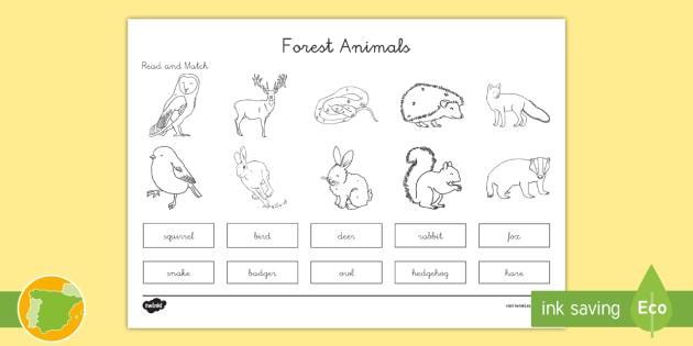 A1 Ficha De Emparejar Palabra Con Dibujo Animales Del Bosque En Ingles