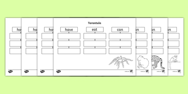 Rainforest Animals Have Eat Can Writing Frames - writing aid