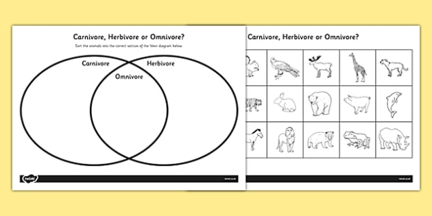 Venn Diagram Worksheet Ks1 Omnivore Carnivore Or Herbivore