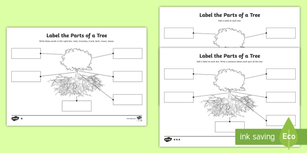 Ks1 Label The Parts Of A Tree Differentiated Worksheets