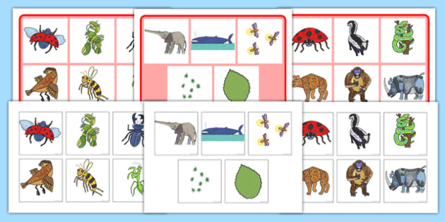 Matching Mat SEN to Support Teaching on The Bad Tempered Ladybird - word mat, visual aid