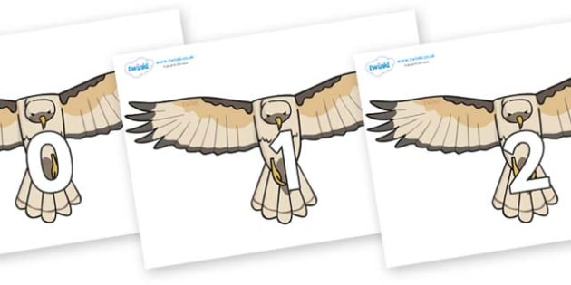 Numbers 0-100 on Hawks - 0-100, foundation stage numeracy, Number recognition, Number flashcards, counting, number frieze, Display numbers, number posters
