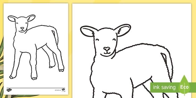 Lamb Body Outline Colouring (teacher Made)