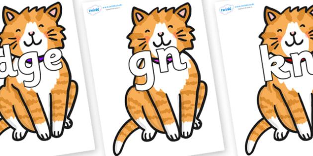 Silent Letters on Cat - Silent Letters, silent letter, letter blend, consonant, consonants, digraph, trigraph, A-Z letters, literacy, alphabet, letters, alternative sounds