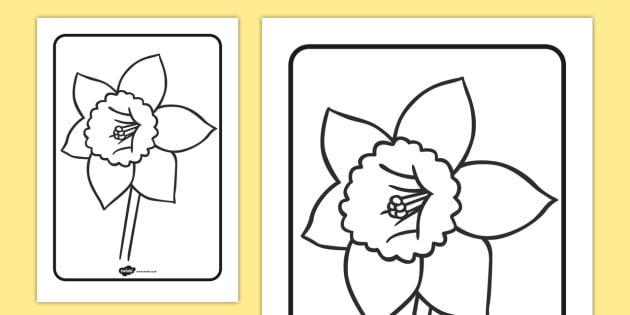 daffodil colouring sheet daffodil colouring sheet colour - Colour In Sheet