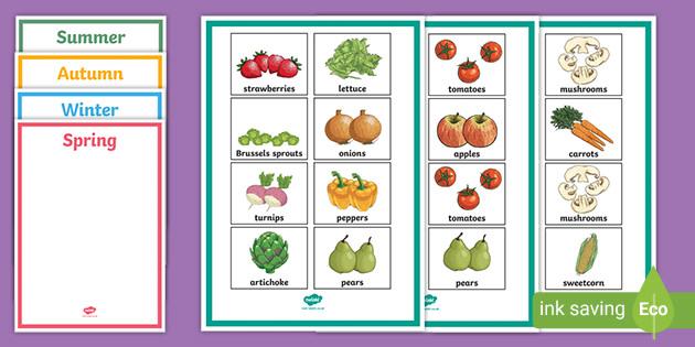British Seasonal Fruits And Vegetables Sorting Activity