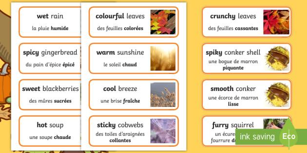 Autumn senses Word Cards English/French - autumn, senses, word cards, word, cards