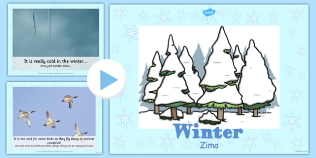 Winter Information PowerPoint Polish Translation - polish, winter, powerpoint, information