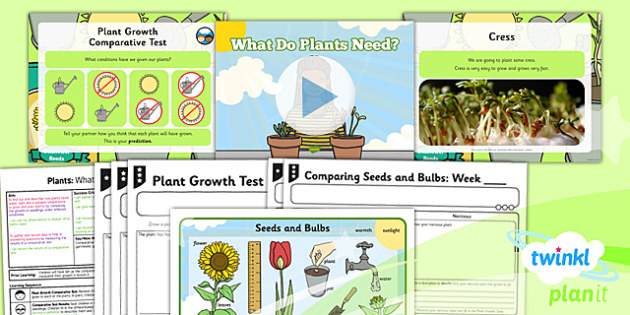 Science: Plants: What Do Plants Need Year 2 Lesson Pack 4