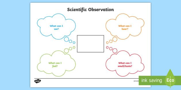 Scientific Observations Worksheet Worksheet New Zealand Science