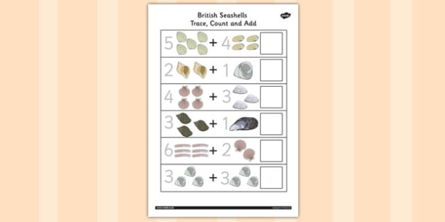 British Seashell Trace, Count Add Worksheet - british seashell