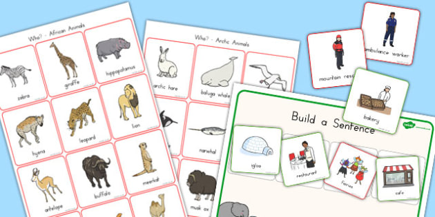 Question Word Activity Pack - australia, question, word, activity