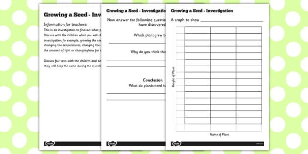 Growing a Seed Investigation - growing, seed, investigation