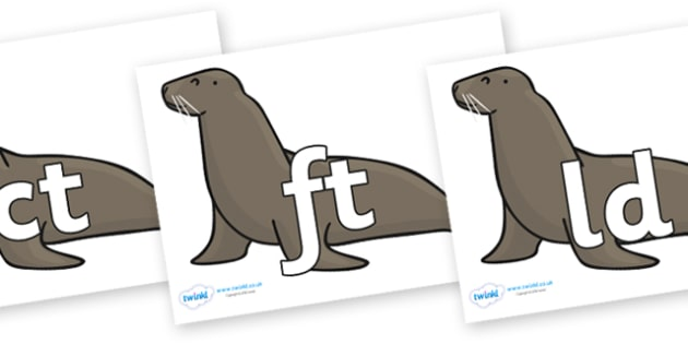 Final Letter Blends on Sealions - Final Letters, final letter, letter blend, letter blends, consonant, consonants, digraph, trigraph, literacy, alphabet, letters, foundation stage literacy