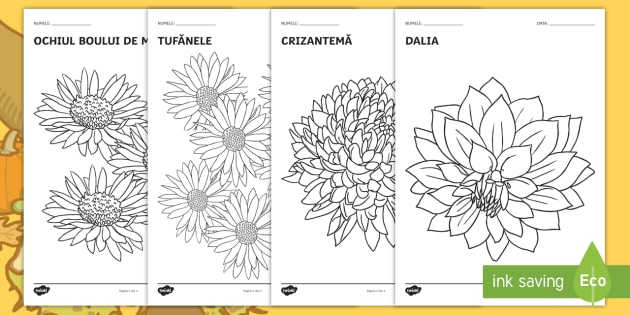 Colorează în Culorile Toamnei Pagini De Colorat Florile