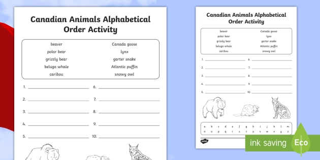 canadian animals alphabetical order worksheet english alphabet rh twinkl com