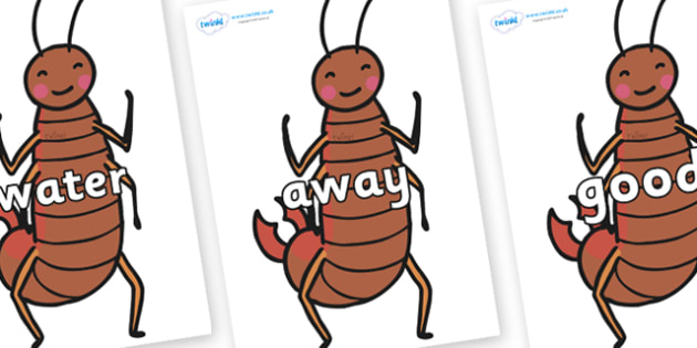 Next 200 Common Words on Earwigs - Next 200 Common Words on  - DfES Letters and Sounds, Letters and Sounds, Letters and sounds words, Common words, 200 common words